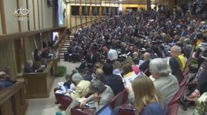 Conférence de presse Vatican Laudato Si